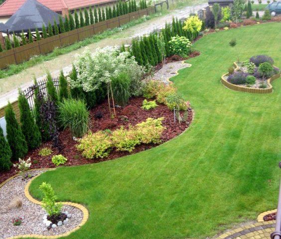 Живая изгородь из туи: лучшие сорта