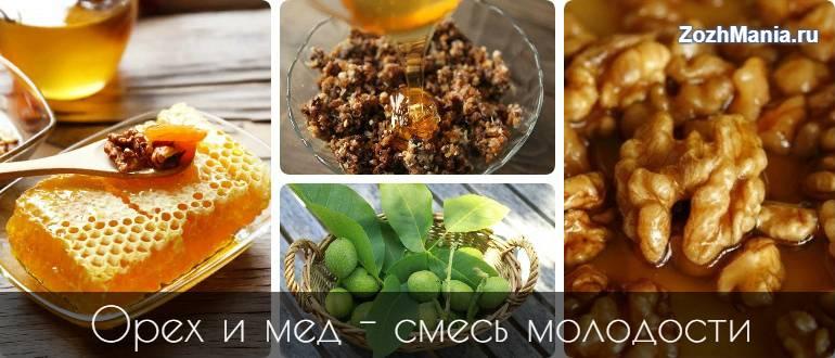 Грецкий орех с медом для мужчин: целительные свойства и эффективные рецепты