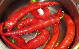 Почему сладкий перец горчит? как убрать горечь.что можно сделать, чтобы покраснел болгарский перец, собранный зелёным? удивительно полезные свойства жгучего перца для вашего здоровья