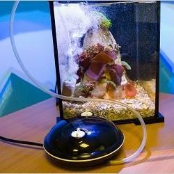 Виды насадок для аквариумного аэратора