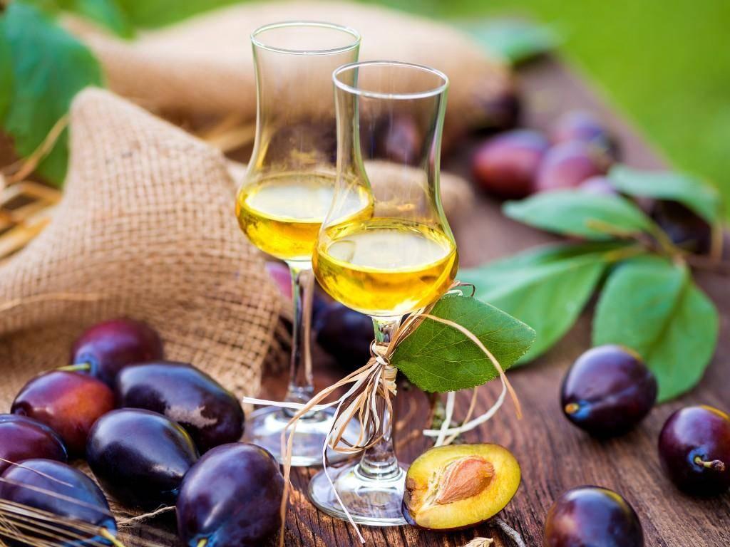 Как сделать вино из слив: простые рецепты в домашних условиях