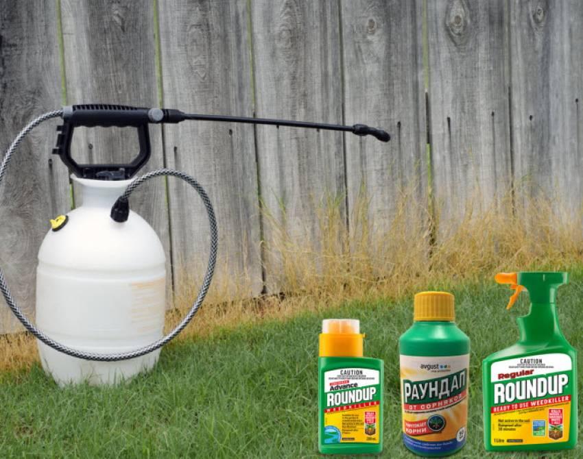 Раундап гербицид сплошного действия