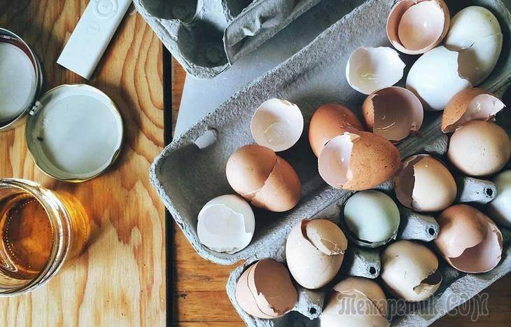 Настой яичной скорлупы для подкормки рассады овощей и цветов