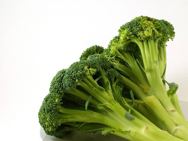 Выбираем для дачных грядок лучшие сорта капусты брокколи