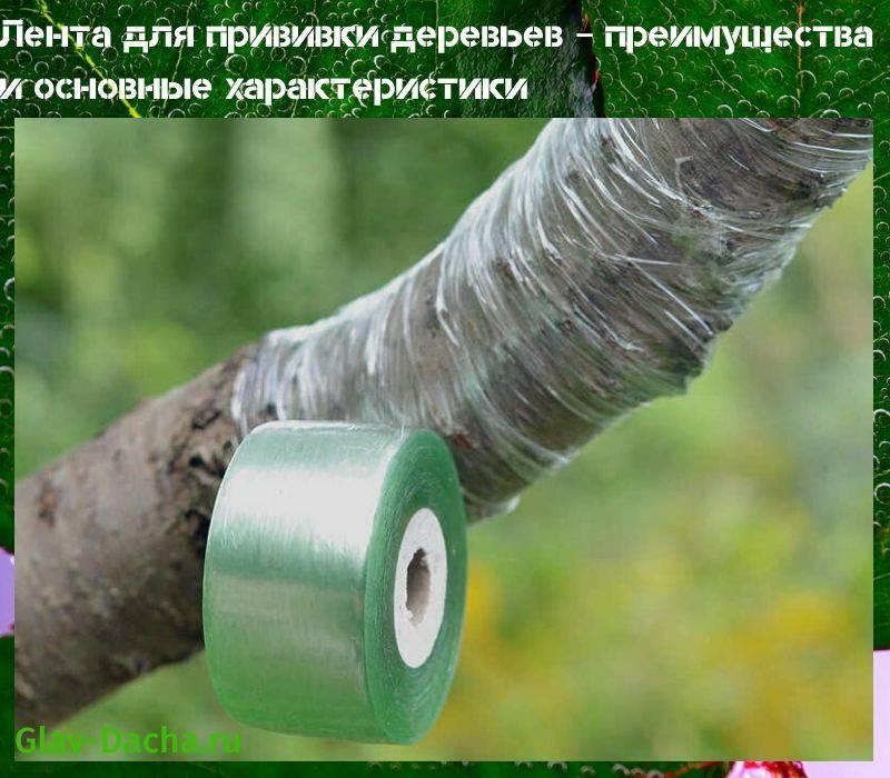 Сеялка-дозатор из китая — характеристики изделия, правила использования, цена, видео