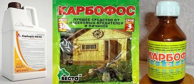 Карбофос на огороде. карбофос, инструкция по применению в саду