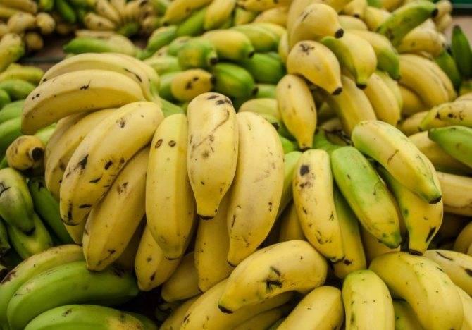 Установки производства компании tomra для сортировки ананасов