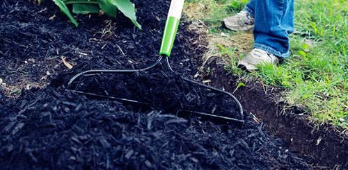 Топ-7 ошибок при мульчировании почвы