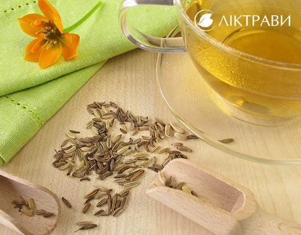 Сорняк или панацея? полезные свойства фенхеля, противопоказания и лучшие рецепты
