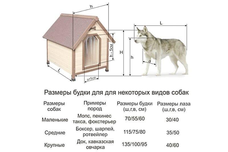 Будка для собаки своими руками чертежи и размеры. пошаговые фото
