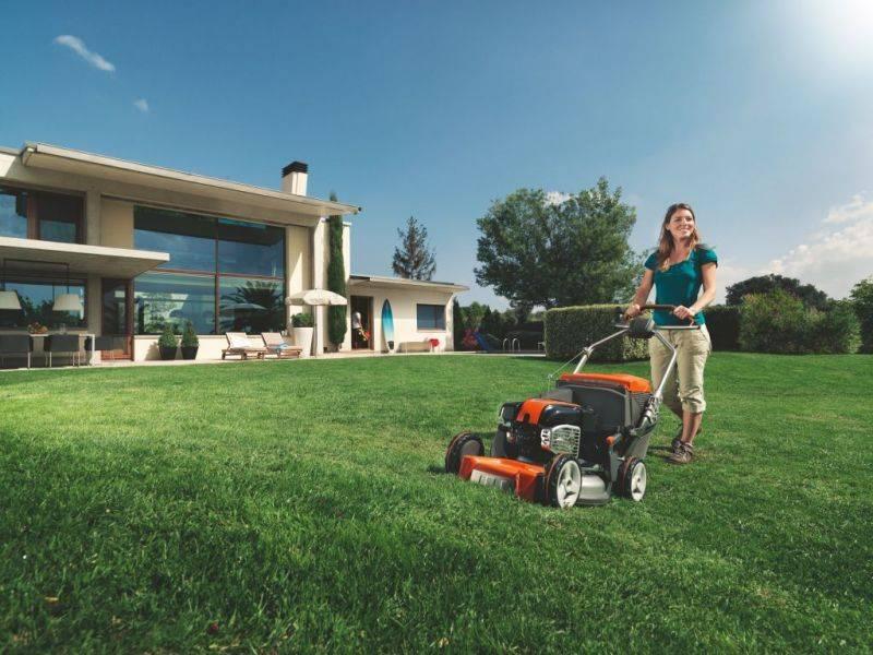 Как правильно сеять газон: подготовка, выбор семян, гидропосев