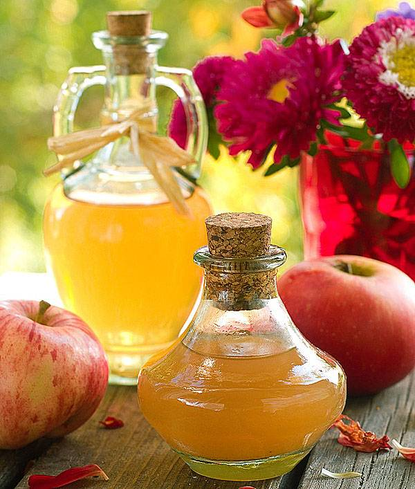 Польза и вред натурального яблочного уксуса