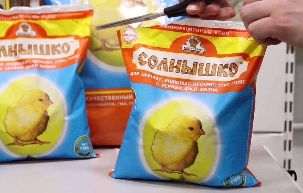 Состав и особенности подбора комбикорма для цыплят