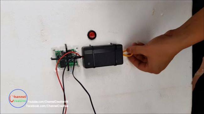 Инкубатор из микроволновки — как сделать, принцип работы, видео