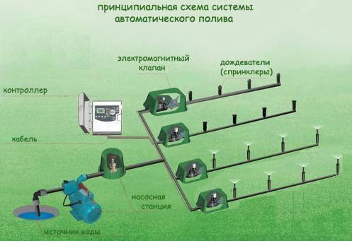 Посоветуйте схему автополива газона