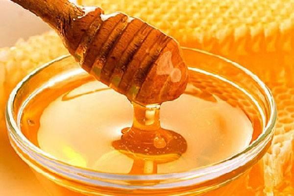 Продукты пчеловодства: подробный разбор