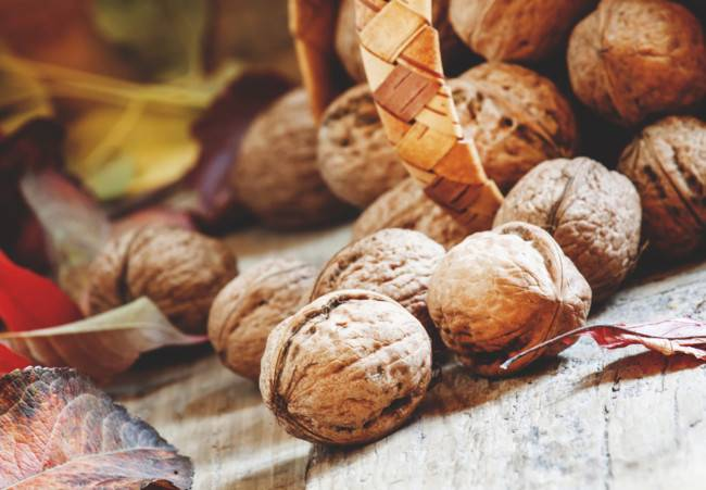 Грецкий орех для потенции: состав, полезные свойства и влияние на потенцию