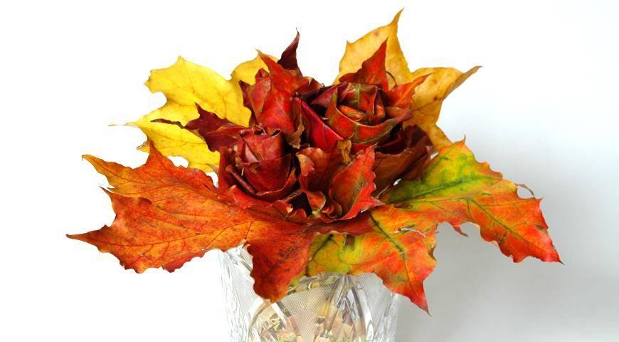 Как сделать розы из кленовых листьев — пошагово