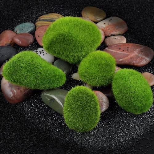Выбираем для сада камни с зеленым мхом из Китая