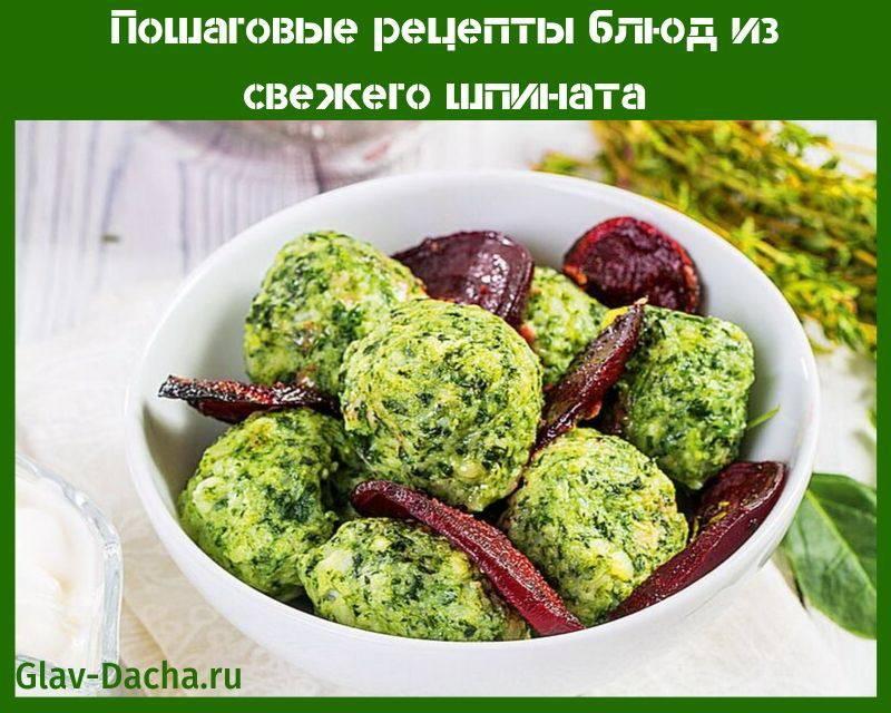 Пошаговые рецепты блюд из свежего шпината