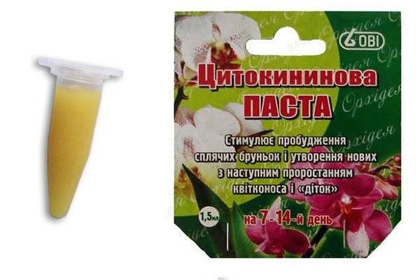 Чем подкормить орхидеи: всё об удобрениях и подкормке в домашних условиях