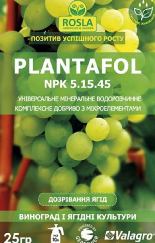Чем и когда подкормить виноград, чтобы собрать хороший урожай