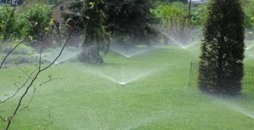 Опрыскиватели и пульверизаторы: виды и принцип работы, какой выбрать для сада и ремонт