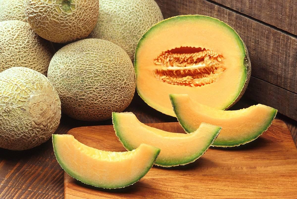 Кассаба (зимняя дыня) — что это за фрукт?