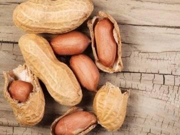 Выращиваем арахис самостоятельно