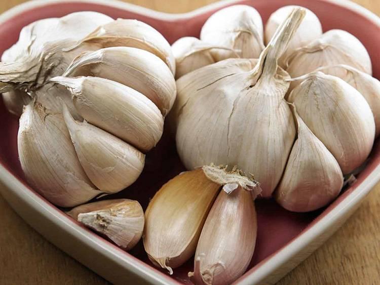 Польза и вред чеснока, рецепты от заболеваний