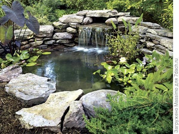 Искусственный пруд – устройство водоема на даче своими руками