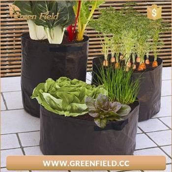 Руководство | контейнерное садоводство: мини-грядки для зелени, выращивание овощей