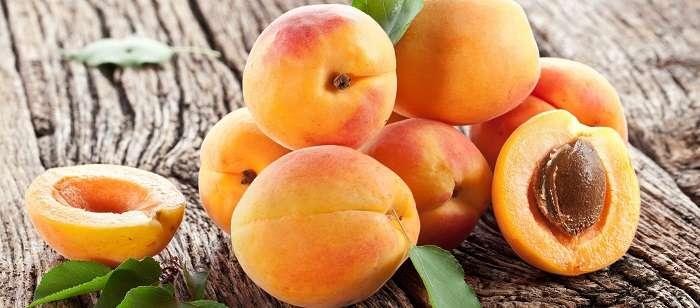 Описание основных отличий жерделы и абрикоса