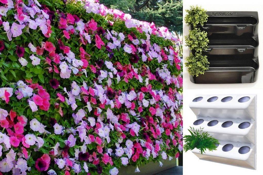 Вертикальные клумбы — идеи создания красивых цветников своими руками (90 фото)