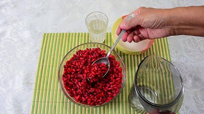 Барбарис (ягоды, корень) — полезные свойства и противопоказания, рецепты