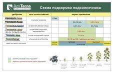 Удобрение подсолнечника: современно и эффективно