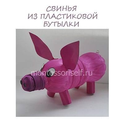 Как сделать копилку свинью из бутылки. пошаговая инструкция изготовления поросенка из пластиковой бутылки. смешные поросята — видео