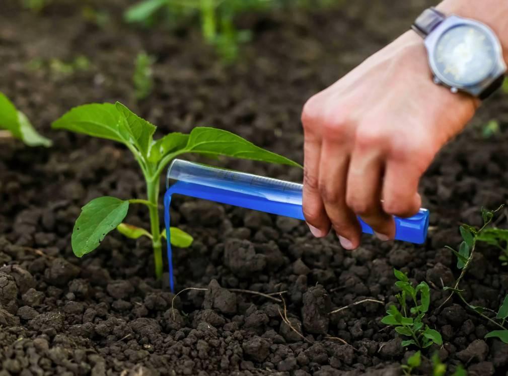 Правила применения акварина и секреты от опытных садоводов