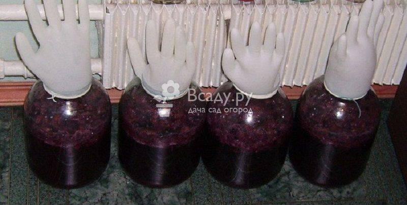 Простые рецепты домашнего вина из старого или забродившего варенья