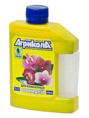 Чем подкормить орхидею – основные правила удобрения растений в домашних условиях, лучшие магазинные препараты и народные средства