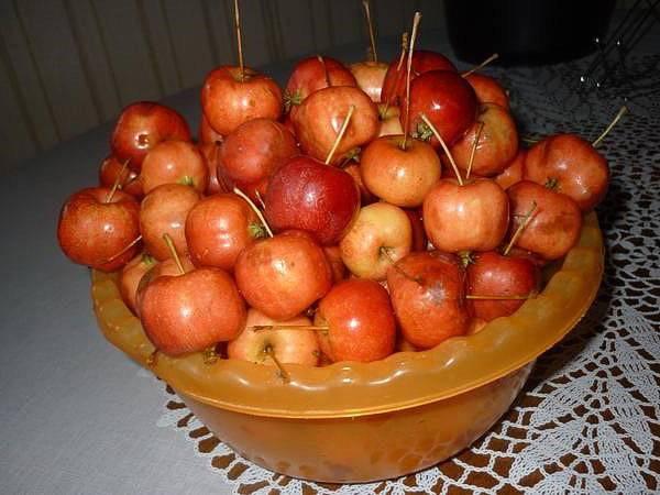 Яблочный компот на зиму: вкуснейшие рецепты без стерилизации!