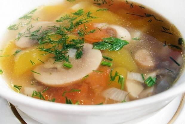 Лучшие рецепты супа из свежих шампиньонов с картофелем
