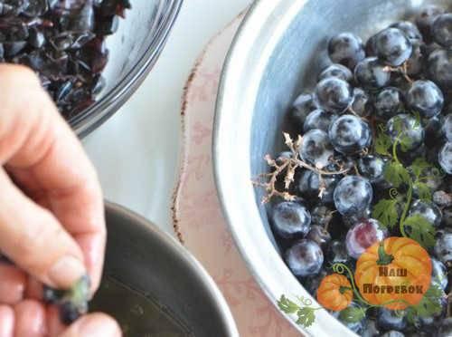 Виноградное варенье — рецепты с ароматом лета. варенье из винограда кишмиш