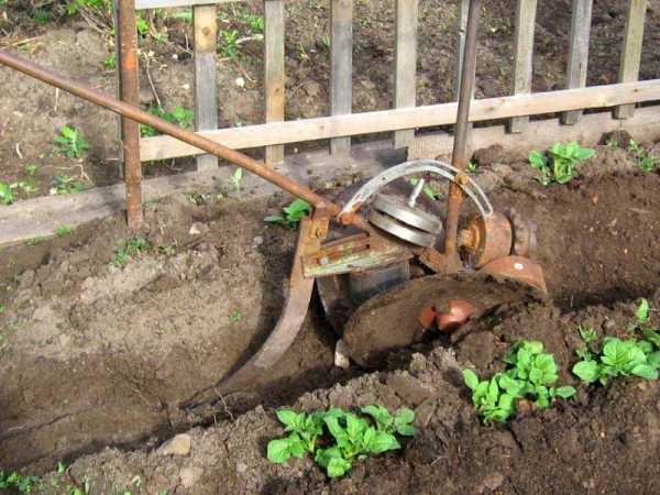 Инструменты для сада и огорода своими руками: виды и способы изготовления