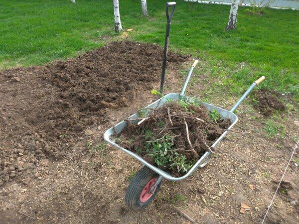 Подготовка почвы для устройства газона