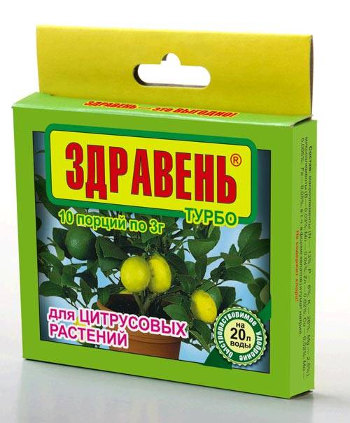 Чем и как правильно подкормить лимон в домашних условиях?