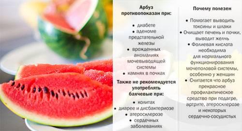 Арбуз, польза и вред для здоровья человека