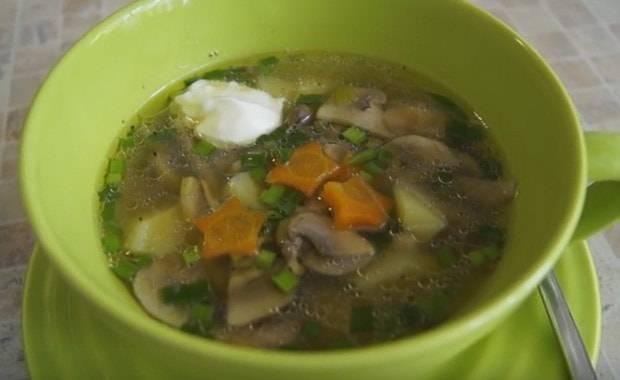 Суп из шампиньонов с картофелем: рецепты приготовления