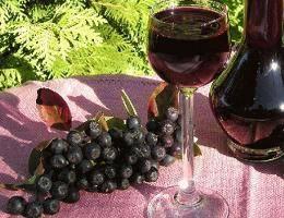 Вкусное вино из черноплодной рябины: простой рецепт приготовления в домашних условиях
