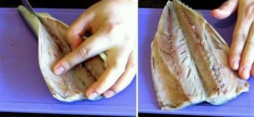 Соленая скумбрия — рецепты как солить скумбрию в домашних условиях